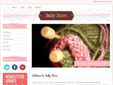 Sally Store WordPress Theme