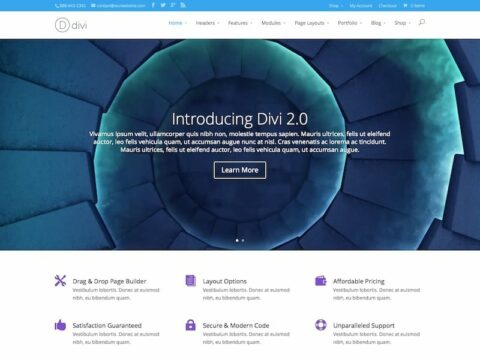 Divi Multimedia WP Theme