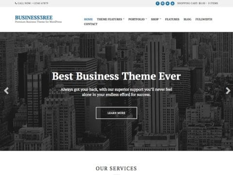 Business3ree WP Theme