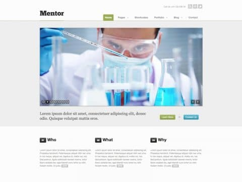 Mentor Business WP Theme