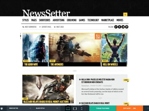 NewsSetter WP Theme