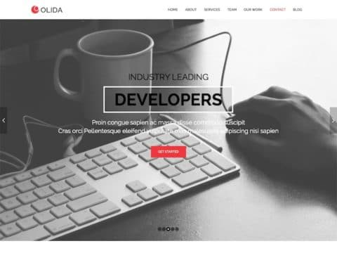 Olida WordPress Theme