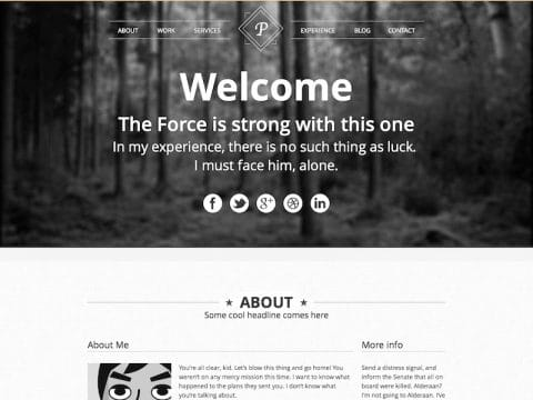 ViewPoint WordPress Theme