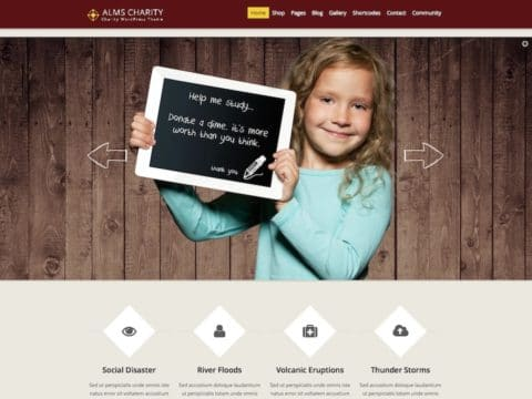 Alms Charity WP Theme