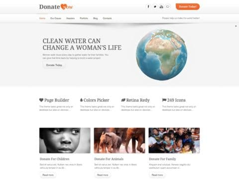 DonateNow WP Theme