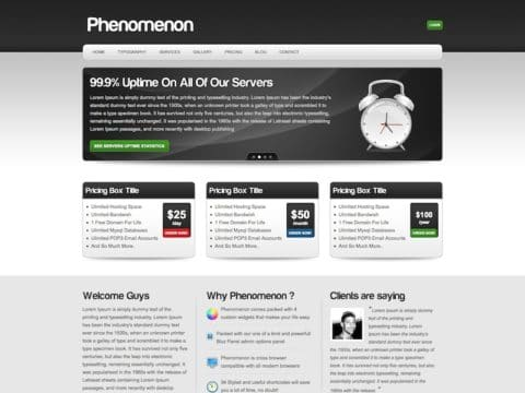 Phenomenon WP Theme