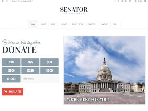 Senator WordPress Theme
