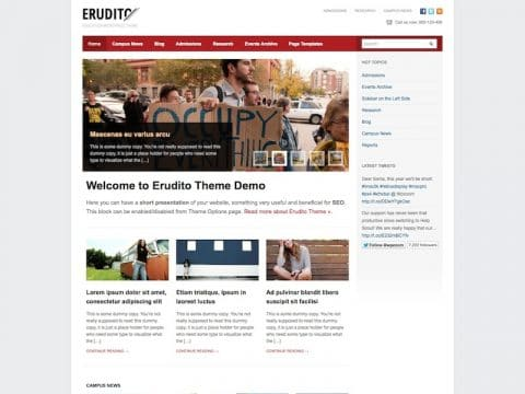 Erudito WP Theme