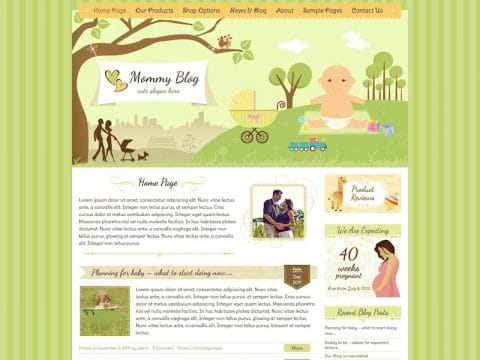 Mommy Blog WP Theme