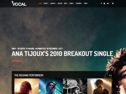 Vocal WordPress Theme