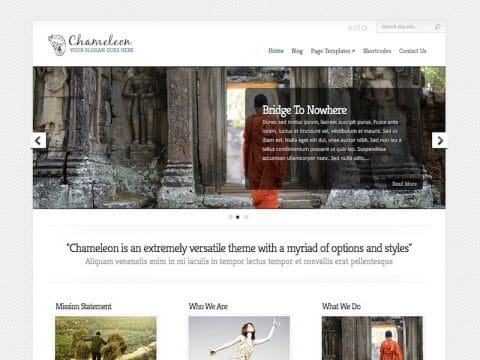 Chameleon Business WordPress Theme