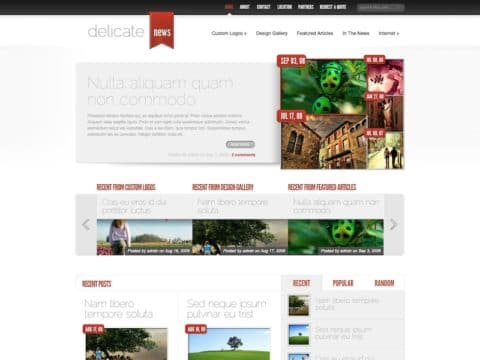 DelicateNews Magazine WordPress Theme