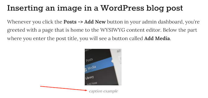 WP Caption Example