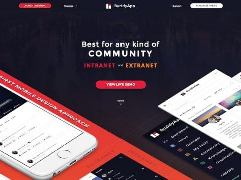 BuddyApp WordPress Theme