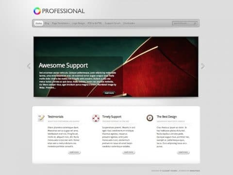 TheProfessional WordPress Theme