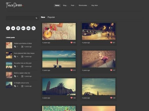 FacePress WordPress Theme