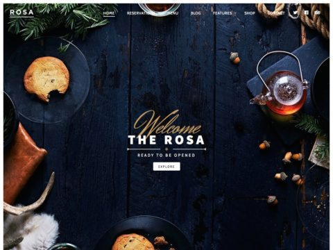 ROSA WordPress Theme