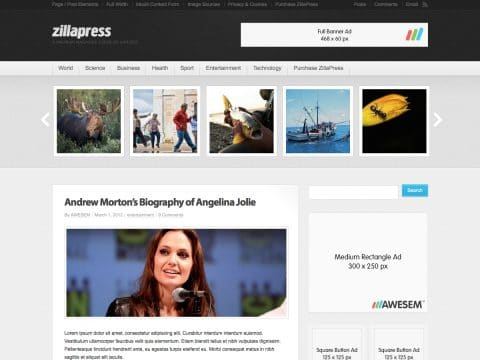 ZillaPress WordPress Theme