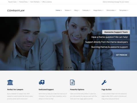 Company Law WP Theme