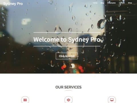 Sydney Pro WordPress Theme