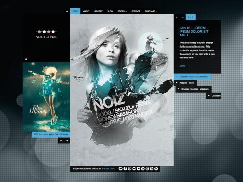 Nocturnal Music WordPress Theme