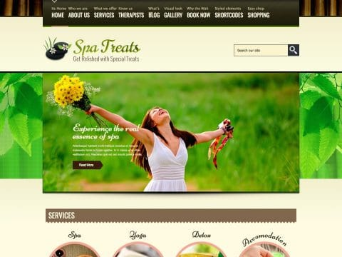 Spa Treats WordPress Theme