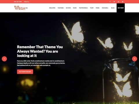 Vega Pro WordPress Theme