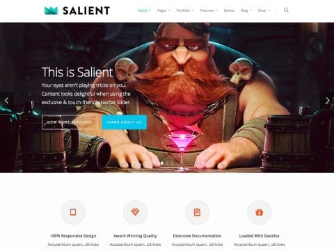 Salient WordPress Theme