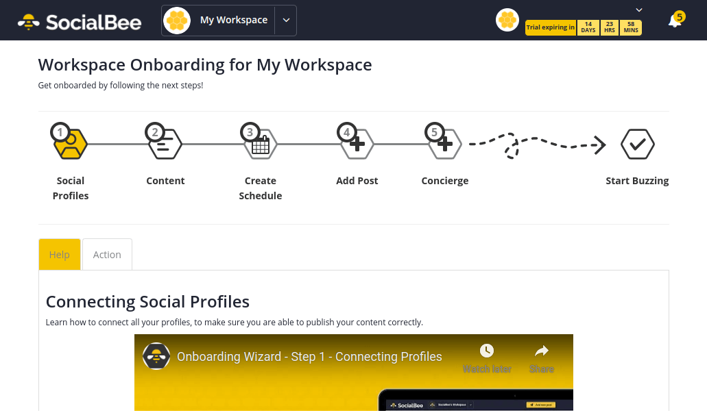 SocialBee - Welcome Dashboard